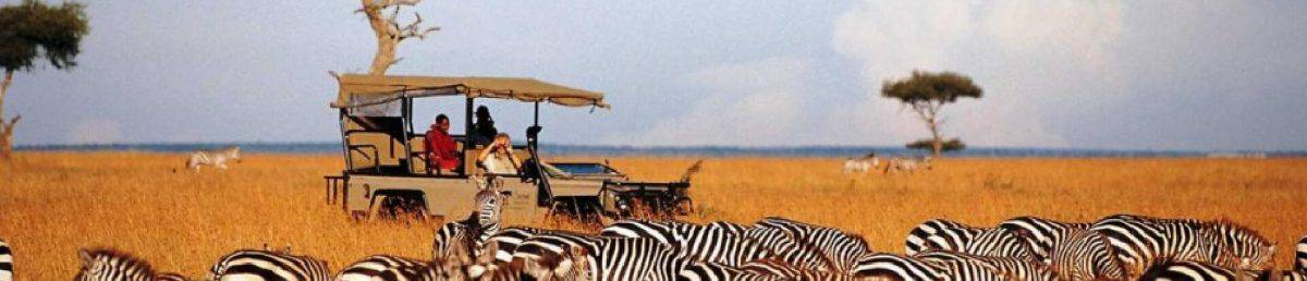 Luxury Kenya and Tanzania safaris