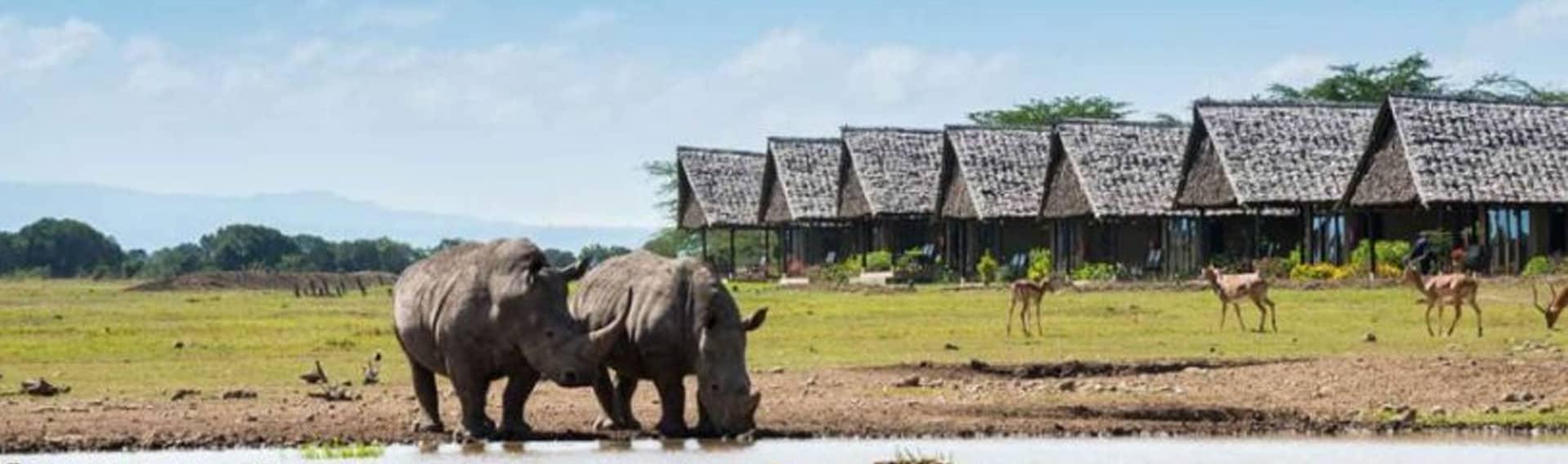 Rhinos waterhole at Ol Pejeta Conservancy