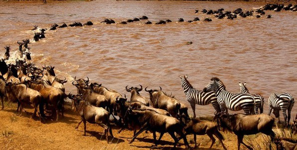 Best of East Africa overland safari