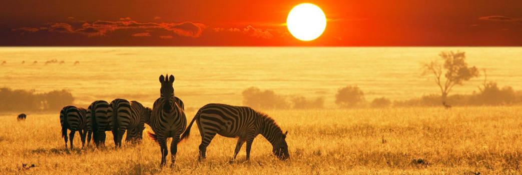 Amboseli Masai Mara safari| 5 days air safari